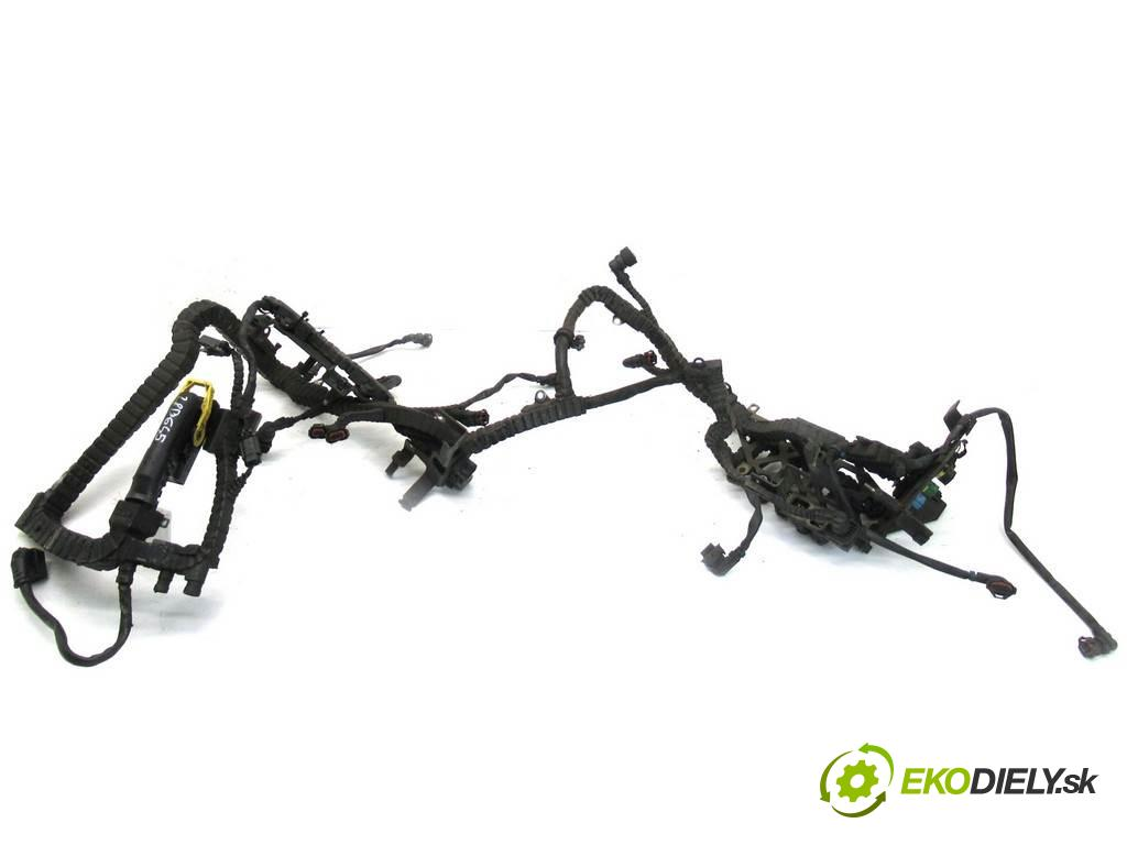 DAF XF 106    EURO6 SPACECAB MX11 440KM 13-  káblovačka elektrická motora 1920262 (Soustavy elektrických kabelů)